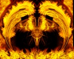 T Burn