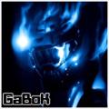 GaBoK