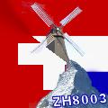 ZH8003