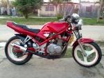 rubens001