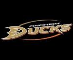 DG_JP[Ducks]