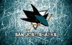 Sharks GM