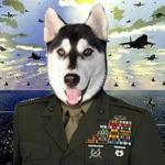 Major Lobo Honrado