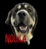 Nouka