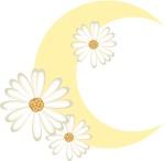 fleurdelune