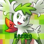 Beemo