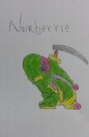 Noirberrie