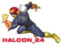 Halcon_24