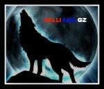williamz