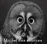 Michel des sources