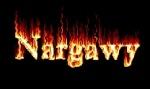 nargawy2010