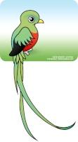 quetzalblanco