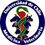 tania_veterinaria