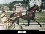 OscarRL67