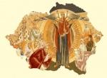 Un creştin-ortodox