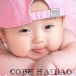 cobe_haidao