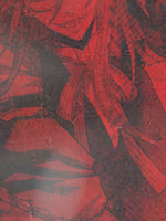 Shinzou-kun