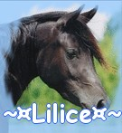 ~¤Lilice¤~