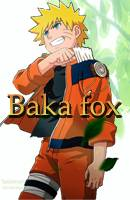 baka_fox