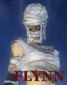 Flynn BZH