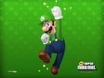 Mini-Elie-Mario