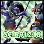 seb91210