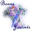 Newsletter du 26 septembre 2017 du Jardin du Rêve 1250927456