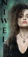 Niwel
