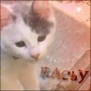 Itachy