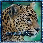 mimik35