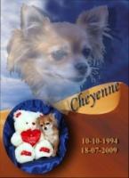 souvenir.cheyenne