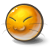 yolks cat