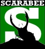 ScarabéeGrillage