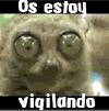 _paisa_