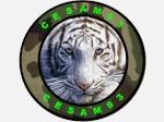 cesam93
