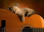Marta-guitar