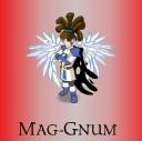 Mag-Gnum
