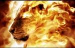 LionCub{Demon}