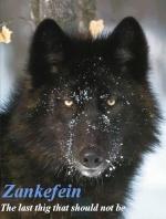 Zankefein
