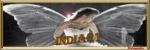 india21