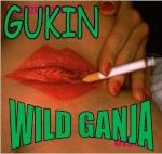 Gukin