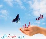 Islamic Videos & Audios 2543-20