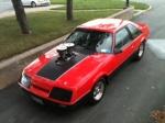 Mustang-junky