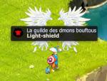 Light-shield