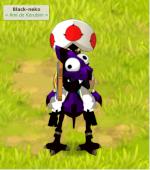 black-neko