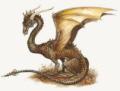 dragonet70