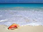 عاشق البحر