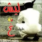 فارس الشام