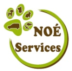 noeservices