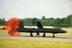 Blackbird63